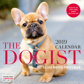 The Dogist Wall Calendar 2019 - cover