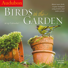 Audubon Birds in the Garden Wall Calendar 2019 - cover