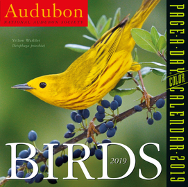 Audubon Birds Page-A-Day Calendar 2019 - cover