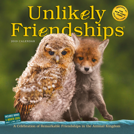 Unlikely Friendships 2019 Wall Calendar - cover