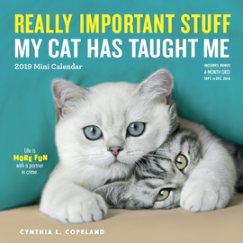 Really Important Stuff My Cat Has Taught Me Mini Calendar 2019 - cover