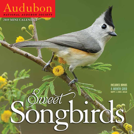 Audubon Sweet Songbirds Mini Wall Calendar 2019 - cover