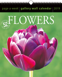 Flowers Page-A-Week Gallery Wall Calendar 2019 - cover