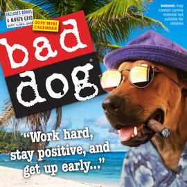 Bad Dog Mini Wall Calendar 2019 - cover