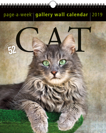 Cat Page-A-Week Gallery Wall Calendar 2019 - cover