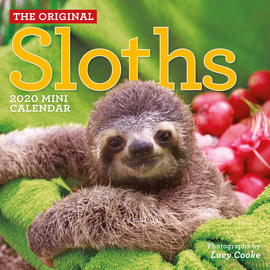 Original Sloths Mini Wall Calendar 2020 - cover