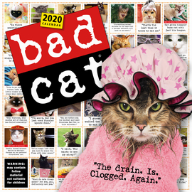 Bad Cat Wall Calendar 2020 - cover