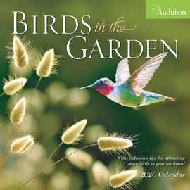 Audubon Birds in the Garden Wall Calendar 2020 - cover
