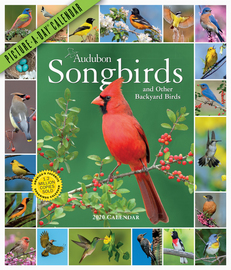 Audubon Songbirds and Other Backyard Birds Picture-A-Day Wall Calendar 2020 - cover