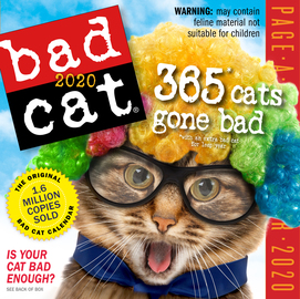 Bad Cat Page-A-Day Calendar 2020 - cover