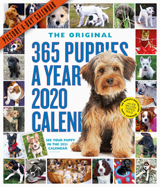 365 Puppies-A-Year Picture-A-Day Wall Calendar 2020 - cover