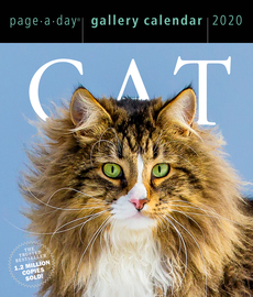 Cat Page-A-Day Gallery Calendar 2020 - cover