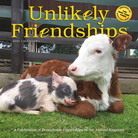 Unlikely Friendships Wall Calendar 2020 - cover