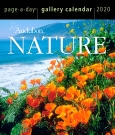 Audubon Nature Page-A-Day® Gallery Calendar 2020 - cover