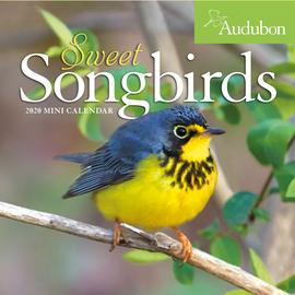 Audubon Sweet Songbirds Mini Wall Calendar 2020 - cover