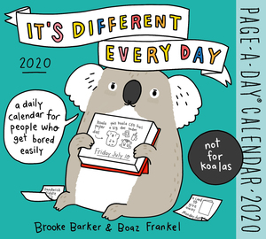 It's Different Every Day Page-A-Day Calendar 2020 - cover