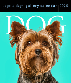 Dog Page-A-Day Gallery Calendar 2020 - cover