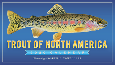 Trout of North America Wall Calendar 2020 - cover