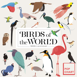 Birds of the World by Pop Chart Lab Wall Calendar 2020 - cover