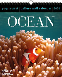 Ocean Page-A-Week Gallery Wall Calendar 2020 - cover