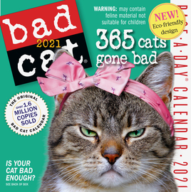 Bad Cat Page-A-Day Calendar 2021 - cover