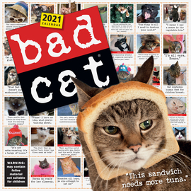 Bad Cat Wall Calendar 2021 - cover