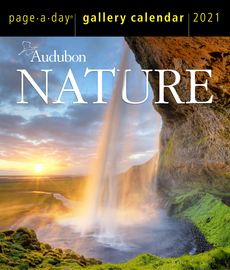 Audubon Nature Page-A-Day® Gallery Calendar 2021 - cover
