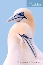 Audubon Engagement Calendar 2021 - cover