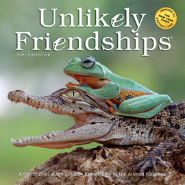 Unlikely Friendships Wall Calendar 2021 - cover