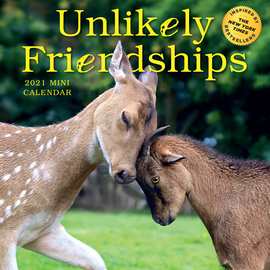 Unlikely Friendships Mini Wall Calendar 2021 - cover