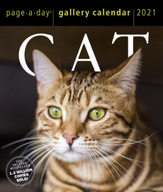 Cat Page-A-Day Gallery Calendar 2021 - cover
