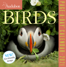 Audubon Birds Page-A-Day Calendar 2021 - cover
