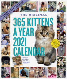 365 Kittens-A-Year Picture-A-Day Wall Calendar 2021 - cover