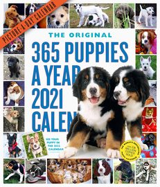 365 Puppies-A-Year Picture-A-Day Wall Calendar 2021 - cover