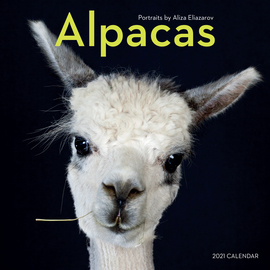 Alpacas Wall Calendar 2021 - cover