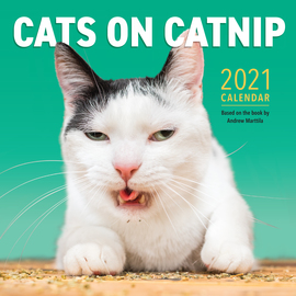 Cats on Catnip Wall Calendar 2021 - cover