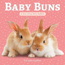 Baby Buns Mini Wall Calendar 2021 - cover