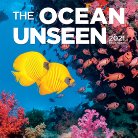 The Ocean Unseen Wall Calendar 2021 - cover