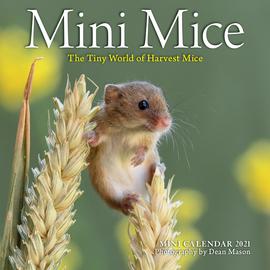 Mini Mice Mini Wall Calendar 2021 - cover