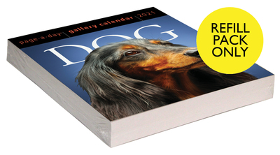 Dog Page-A-Day Gallery Calendar 2021Refill Pack - cover