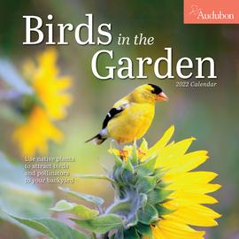 Audubon Birds in the Garden Wall Calendar 2022 - cover
