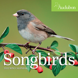 Audubon Songbirds Mini Wall Calendar 2022 - cover