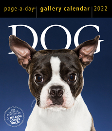 Dog Page-A-Day Gallery Calendar 2022 - cover