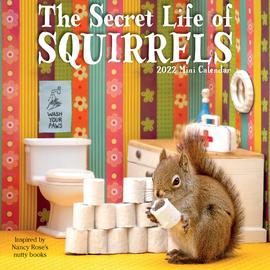 The Secret Life of Squirrels Mini Wall Calendar 2022 - cover