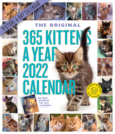 365 Kittens-A-Year Picture-A-Day Wall Calendar 2022 - cover