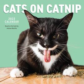 Cats on Catnip Wall Calendar 2022 - cover