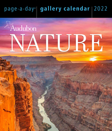 Audubon Nature Page-A-Day Gallery Calendar 2022 - cover