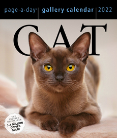 Cat Page-A-Day Gallery Calendar 2022 - cover