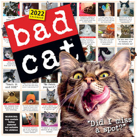 Bad Cat Wall Calendar 2022 - cover