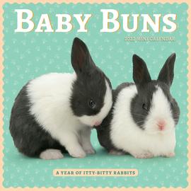 Baby Buns Mini Wall Calendar 2022 - cover